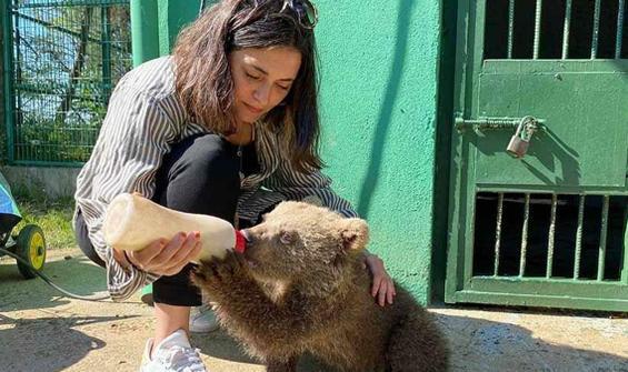 Ünlü oyuncu yavru ayıyı elleriyle besledi!