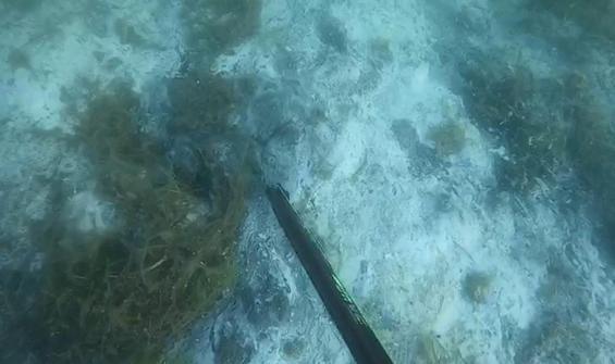 Müsilajın deniz altındaki tahribatı böyle görüntülendi!