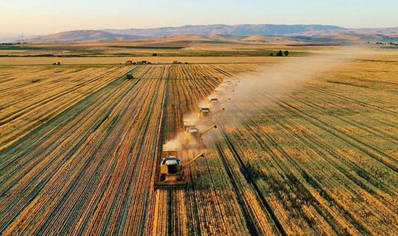 Tarım Kredi 600 milyon lira kredi dağıttı