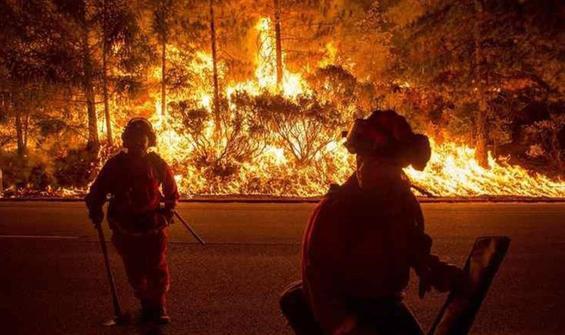 Cinsiyet açıklama partisinde orman yaktılar!