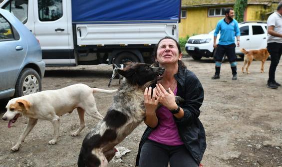 Selin ortasında barınaktaki köpekler için mücadele ettiler