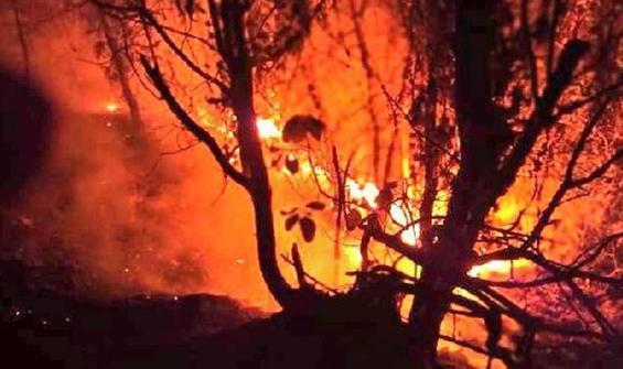 Bir orman yangını haberi de Samsun'dan!