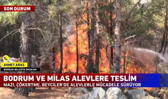 Başkan Aras, Bodrum'daki son durumu anlattı
