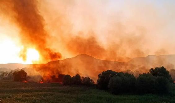 Ankara Nallıhan Kuş Cenneti'nde yangın
