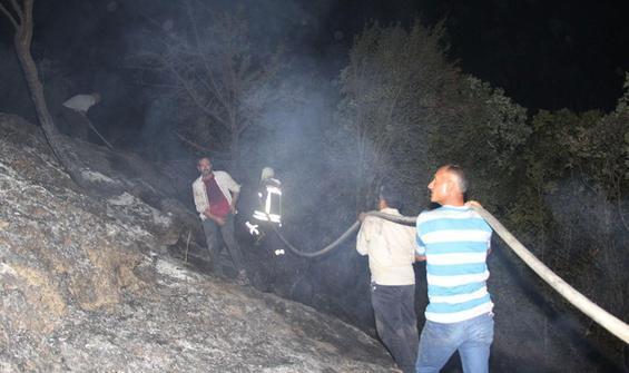 Zeytinlik alanda çıkan yangın ormana sıçramadan söndürüldü