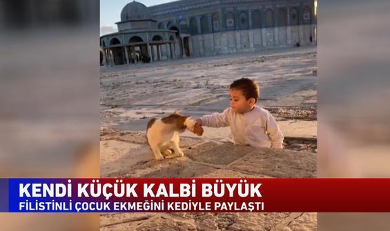 Filistinli çocuk ekmeğini kediyle paylaştı