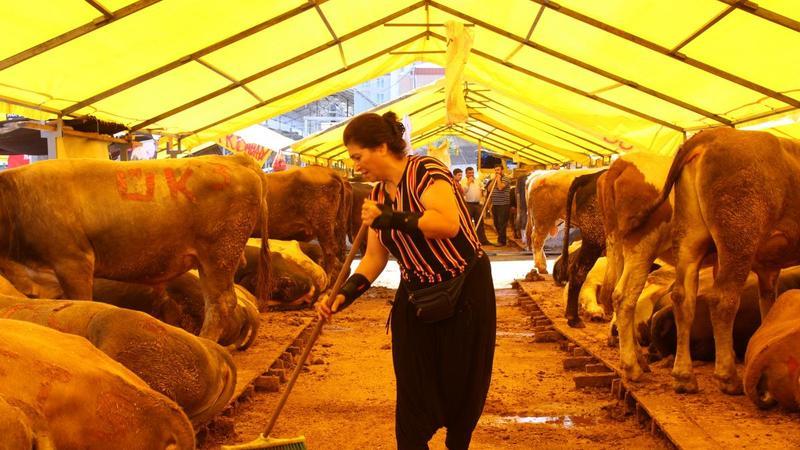 Kurban pazarının tek kadın besicisi