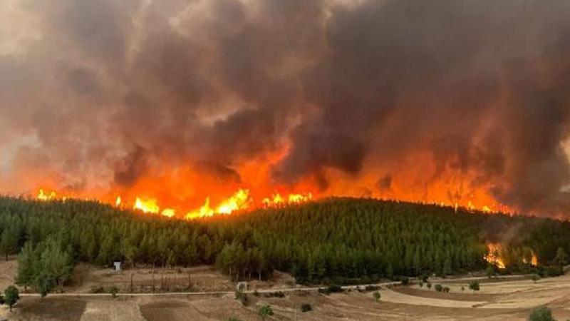 Muğla'daki yangınlarda 38 binden fazla kişi tahliye edildi
