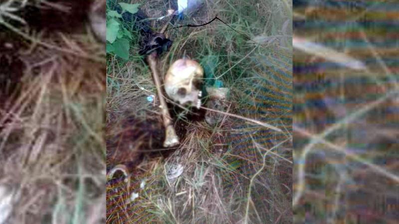 Piknik alanında insan kafatası ve kemikler bulundu