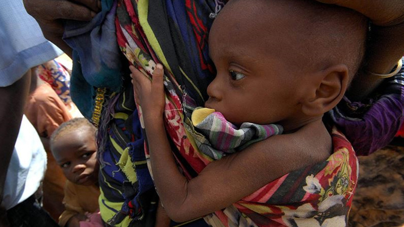 BM'den gıda yoksunluğu çıkışı! 3 milyar insan sağlıklı beslenemiyor