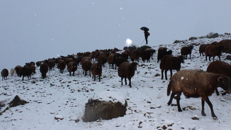 Doğu Anadolu'ya kış erken geldi!