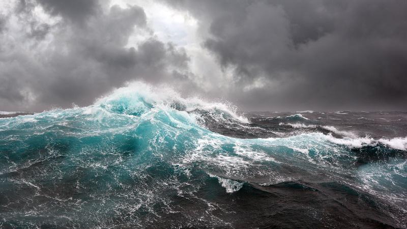 Uzmanlar uyarıyor: Karadeniz'de tehlike çanları!