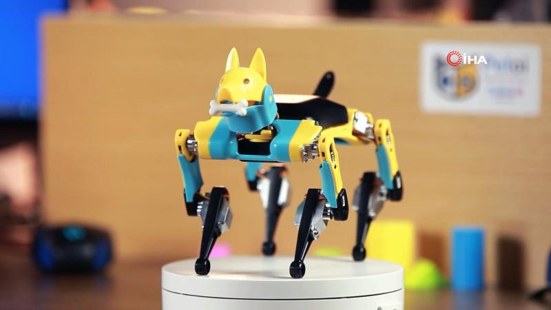 Robot evcil hayvanlara büyük ilgi