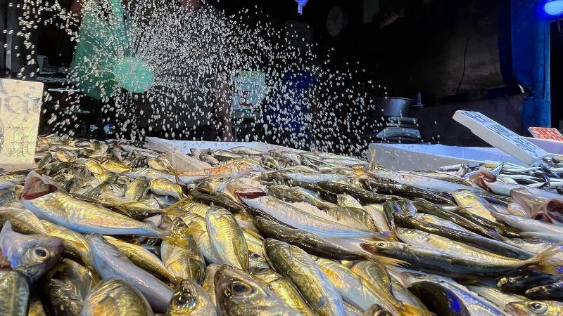 Balık fiyatlarında aracı etkisi