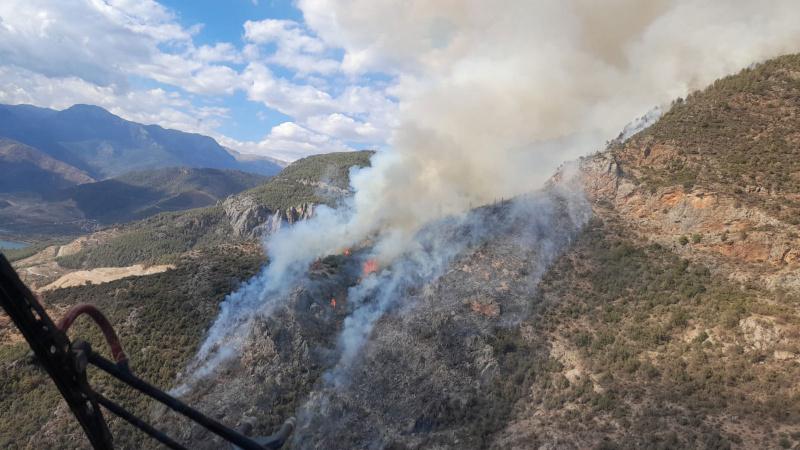 Mersin Anamur'da orman yangını