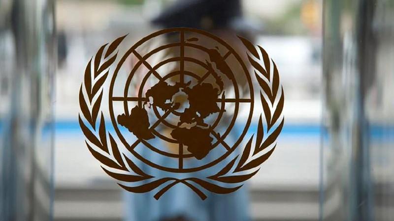 BM'den göçmenlere ilişkin çarpıcı tespit