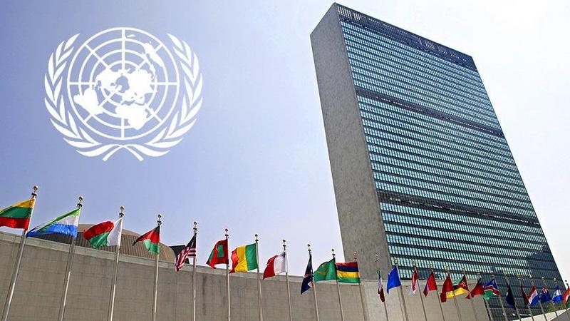 BM'den Fransa'daki tartışmalı yasa tasarısına ilişkin uyarı