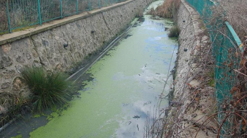 Bartın Irmağı'ndaki kirliliğin nedeni belli oldu