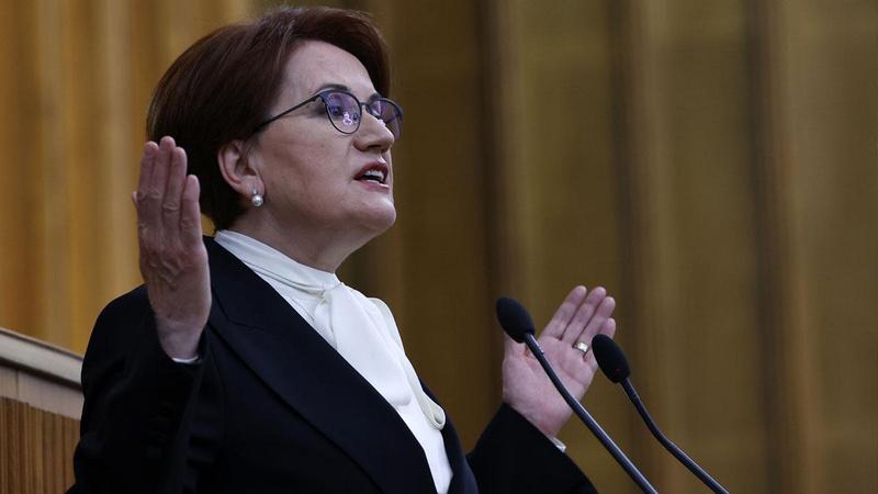 Meral Akşener'den Özlem Zengin'e tepki