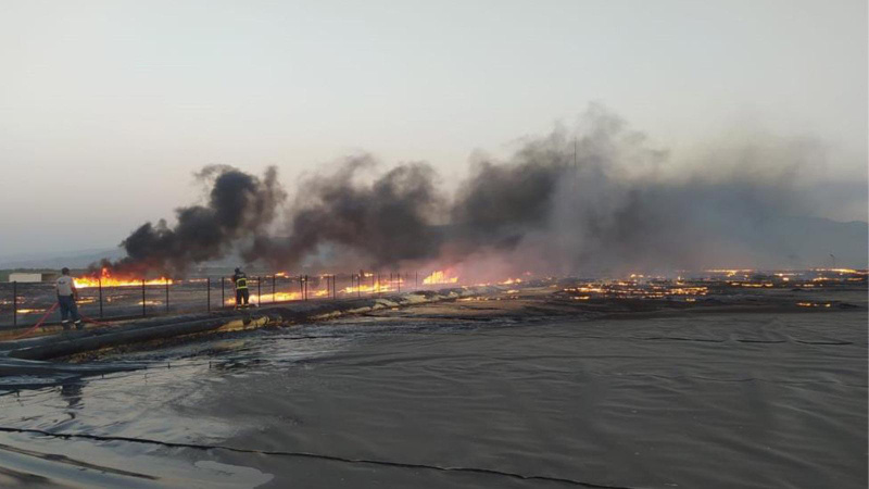 Aydın'da korkutan yangın! Söndürme çalışmaları sürüyor