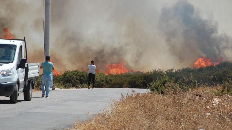 Didim'de makilik alanda yangın