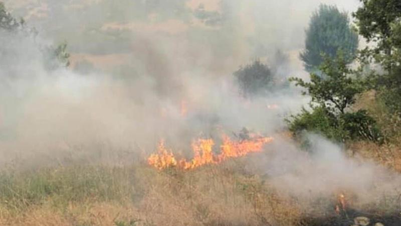 Bingöl ve İzmir'deki yangınlar kontrol altında