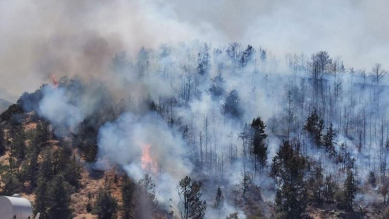 KKTC'de yangın! Alevler büyüyor