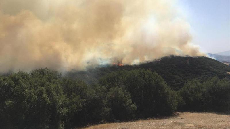Denizli'de yangın yeniden başladı!