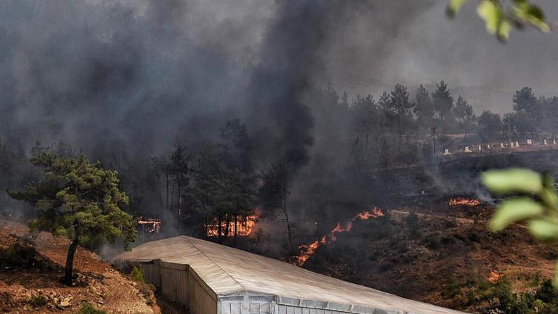 Mersin'de yangınlara ilişkin 1 kişi tutuklandı