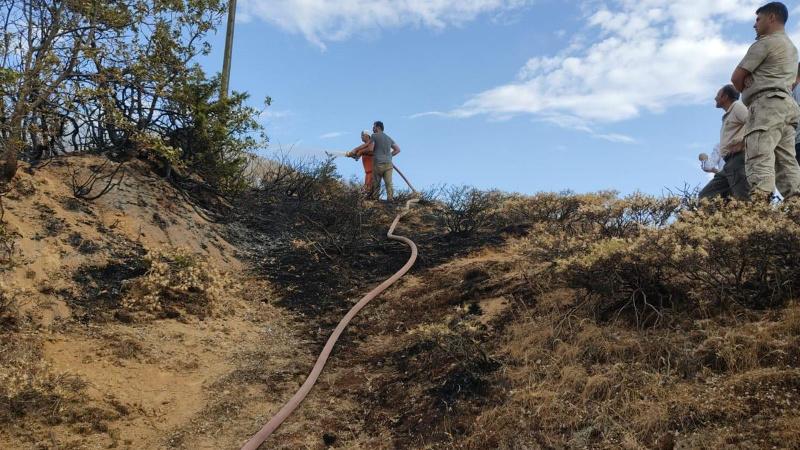 Bingöl'deki orman yangını kontrol altında