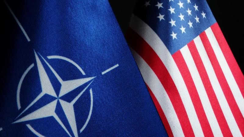 ABD ile NATO arasında 'Afganistan' görüşmesi