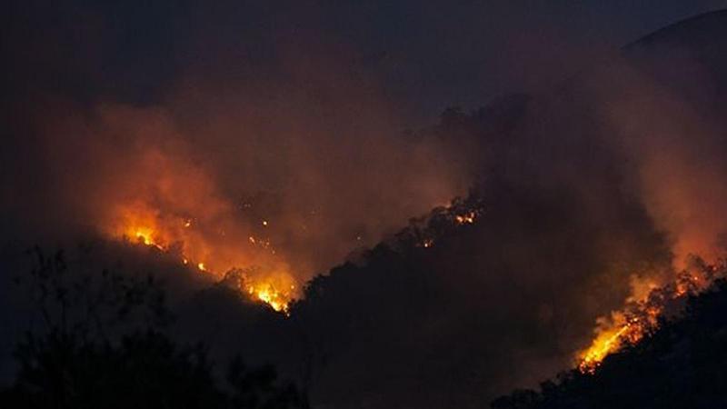 Bingöl ve Tunceli'deki yangına ilişkin açıklama