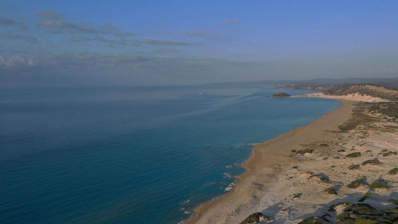 Suriye'den denize petrol sızıyor! Türkiye yakın takipte