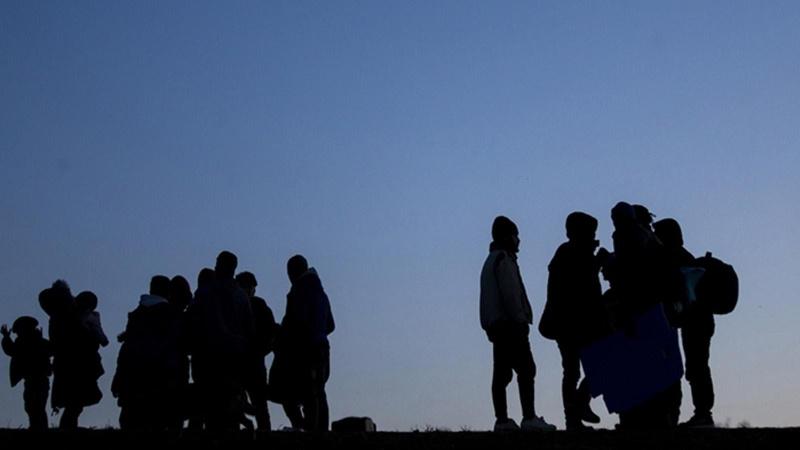 Van'da sınırı geçmeye çalışan 113 göçmen yakalandı