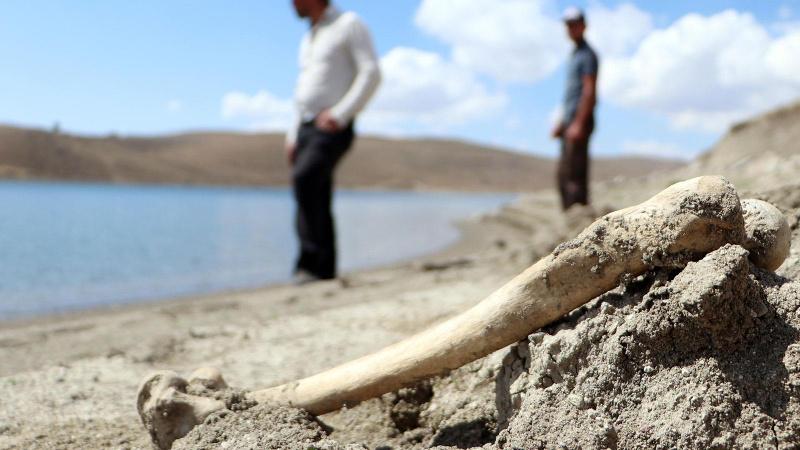 İnsan kemikleri kıyıya vurdu