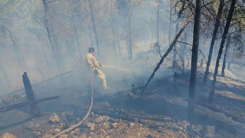 Anamur'daki yangın kontrol altında