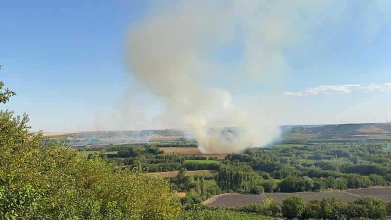 Hevsel Bahçeleri'nde korkutan yangın