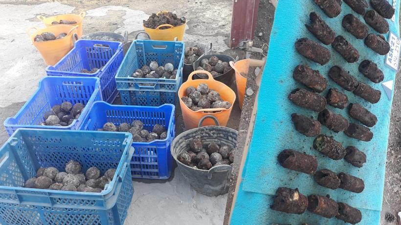 Amida Höyük'te Osmanlı dönemine ait el bombaları bulundu