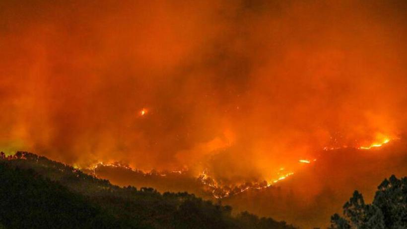 SON DAKİKA! Manavgat'ta yangının yayılması nedeniyle bir mahalle daha boşaltıldı