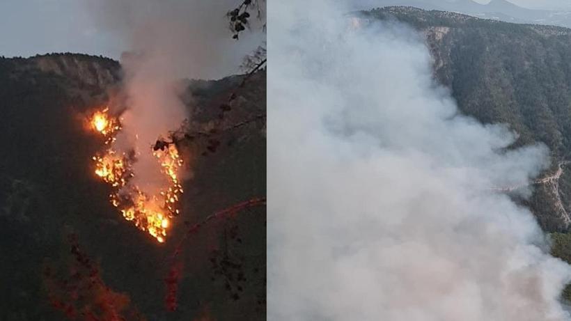 Düşen yıldırım üç kişiyi yaraladı! Ormanda yangın çıktı