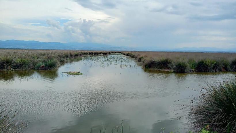 "Kaymakamdan muhtarlara 'sulama suyu' uyarısı: ""Suyu foşur foşur akıtma devri bitti"""