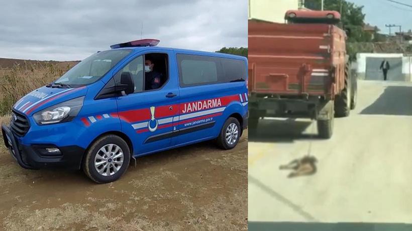 Traktörün arkasına bağladığı köpeği metrelerce sürükleyen sürücüyle ilgili yeni gelişme