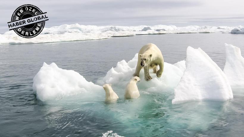 İklim değişikliği psikolojimizi bozdu! Nasıl başa çıkacağız?