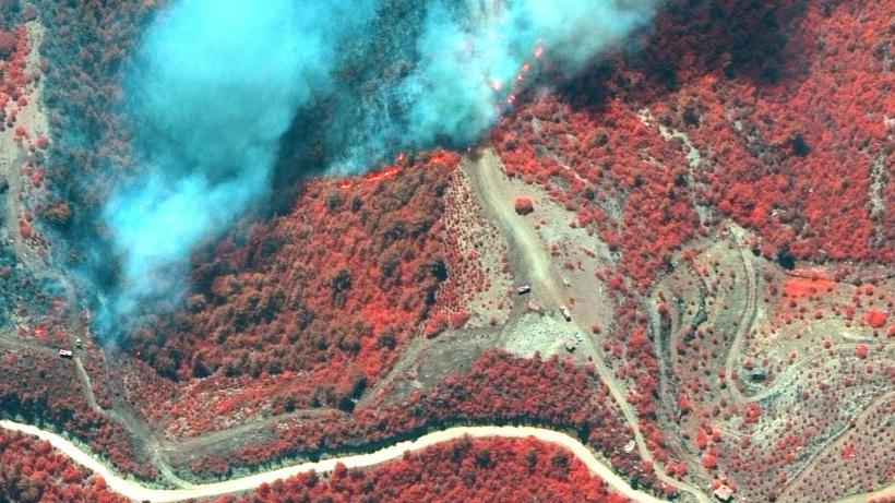 Türkiye'den İtalya'ya ABD'den Rusya'ya... Dünya yangınlarla mücadele ediyor