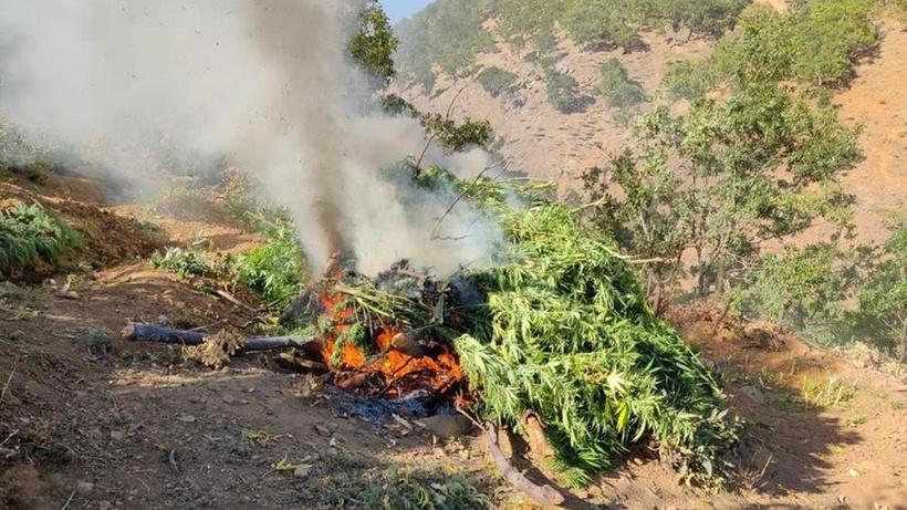 Bingöl'de zehir tacirlerine yönelik operasyon: 4 gözaltı