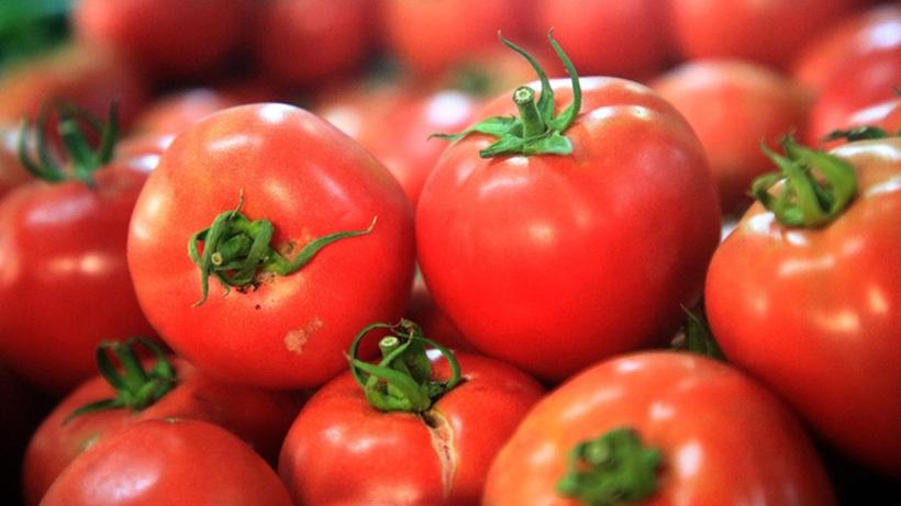 Türkiye'den 8 ayda en çok kiraz ve domates ihraç edildi