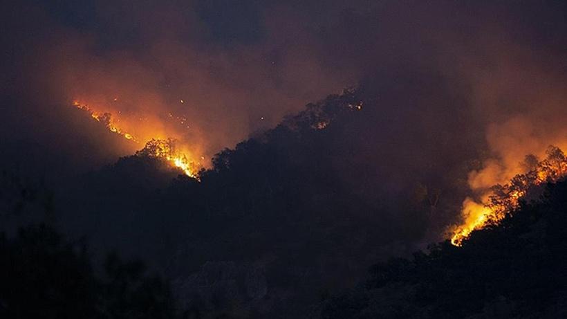Tunceli'deki örtü yangınına havadan müdahale ediliyor