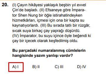 LGS 2020 Türkçe 20. Soru ve Cevapı