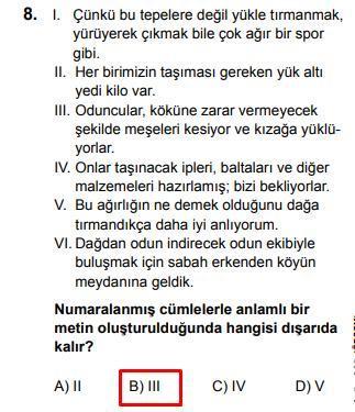 LGS 2020 Türkçe 8. Soru ve Cevapı