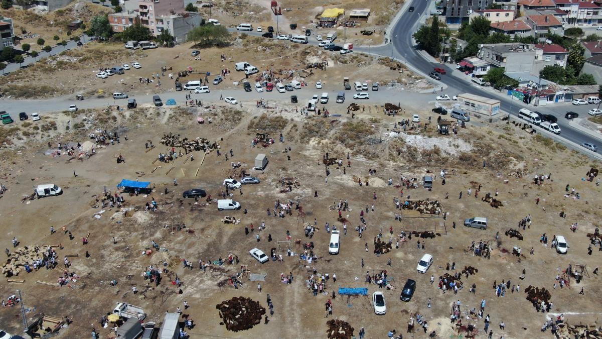 İstanbul'da uyarılara rağmen kurbanlarını açık alanlarda kestiler - Resim: 1
